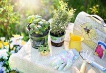 home and garden expos
